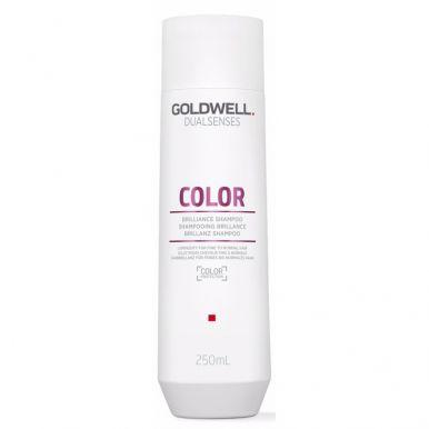 Goldwell Dualsenses Color Shampoo 250ml - Šampon na jemné barvené vlasy