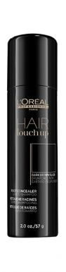 Loréal Professionnel Hair Touch Up Black 75ml - Korektor na odrosty černý