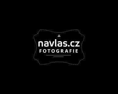 Wahl stříhací hlavice - Standard Blade (02105-416)
