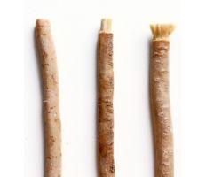 Yoni Tootbrush Miswak - Přírodní zubní kartáček
